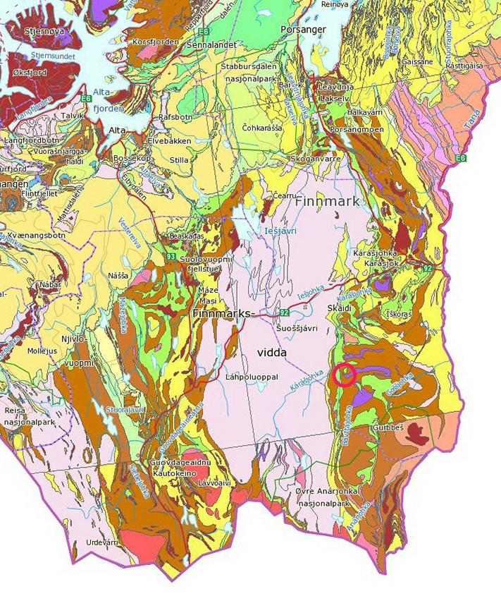 De mest kjente gullforekomstene sør for Karasjok er knyttet til løsmasser over det nord sørgående Karasjokgrønnsteinsbeltet som er et av to slike belter i Finnmark. Beltet, som er 20-40 km bredt, kan følges fra Lakselv til Kittilä i Finland og består av vulkanske og sedimentære bergarter avsatt i et langstrakt riftbasseng. Beltet er en ren fortsettelse av grønnsteinsbeltet gjennom Finland hvor det er påvist mange rike gullforekomster, og hvor det i 2007 ble satt i gang gullproduksjonen i Suurikuusikko, ikke langt fra Kittilä (GEO 08/2003; «Nytt gulleventyr»). På norsk side er det ennå ikke funnet gull i kommersielle mengder innenfor dette beltet. Forekomsten i Bidjovagge ligger i det vestlige Kautokeinogrønnsteinsbel et. Kartutvalg: NGU