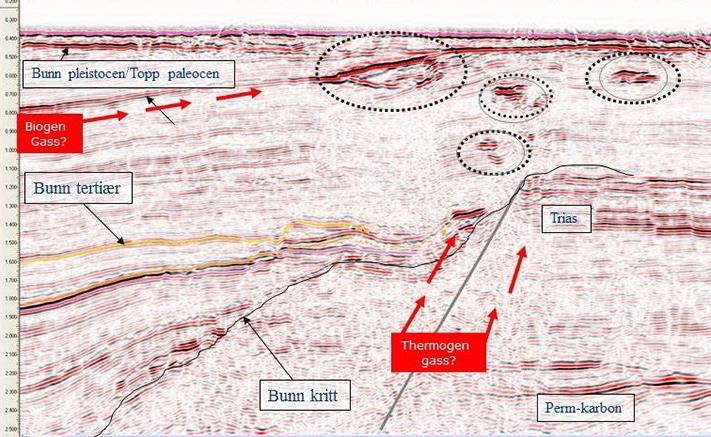 Lundins modell for migrasjon av gass i undergrunnen. Naturlig gassutstrømning på havbunnen kan skyldes både biogen og termogen gass.