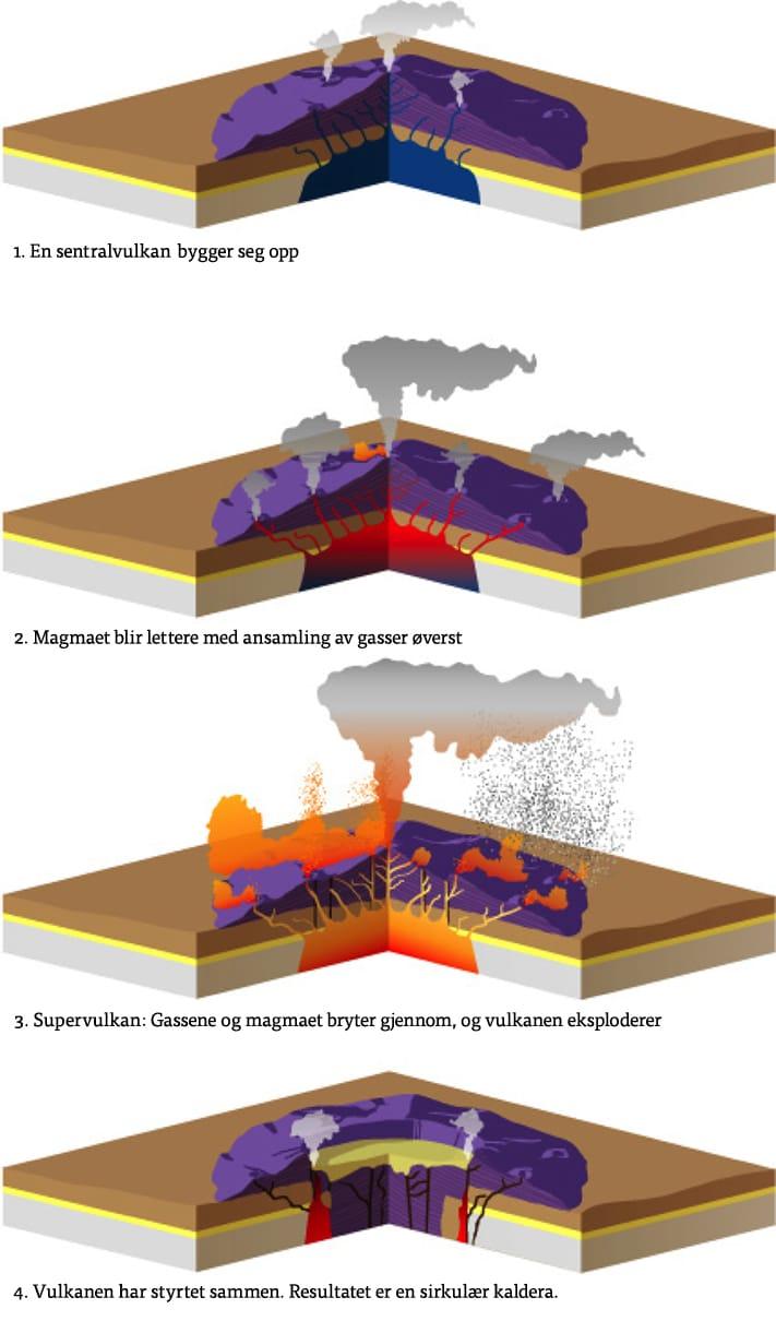 Skjematisk fremstilling av hvordan en kaldera dannes. Prosessen starter med dannelsen av en kjegleformet sentralvulkan, fortsetter med gassansamling høyt oppe, og ender opp med voldsomme eksplosjoner som tilintetgjør vulkanen. Kalderaen oppstår når vulkanen raser sammen. Flere eksplosive utbrudd kan være årsaken til kalderaen, og hvor lang tid det går mellom hver eksplosjon kan være avgjørende for størrelsen. Dette vet vi ingenting om i Oslofeltet. Kilde: Norge blir til, NGF 2006, side 319