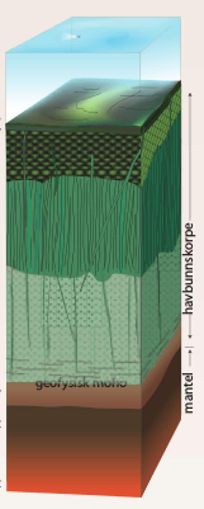 Ofiollittsekvens med mantel nederst og skorpebergarter øverst. Skorpen består av gabbro (lys grønn), gangkomplekser (mørk grønn med tette streker) og putelava olivengrønn). Over skorpen ligger et lag med sedimenter (brun). Kilde: Landet blir til (NGF, 2006)
