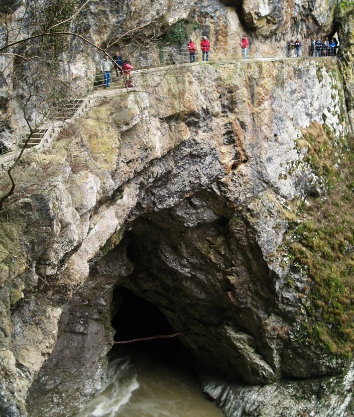 """Skocjangrotten er spesiell fordi vi som turister går langs elven som har dannet og fortsatt danner denne helt spesielle grotten med de kolossale hulrommene. Her ser vi hvor elven Reka kommer inn, og hvor besøkende kommer ut. Inngangen ligger i en forsenkning – en doline – et ord som stammer fra Balkan og betyr """"liten dal"""". Her har det tidligere vært en hule, men taket har bristet, og i stedet er det et stort hull i bakken (""""kollapsdoline). Slike doliner er vanligei dette landskapet og lett og få øye på for turistene som kommer med bil. Foto: Halfdan Carstens"""