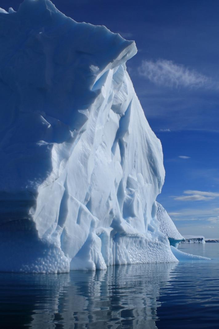 Kvartærtiden ble innledet med en kraftig nedkjøling av atmosfæren og dannelse av isbreer som etter hvert dekket store deler av Nord-Amerika og Nord-Europa. Nedisningen av Antarktis begynte mye tidligere. Foto: Gary Yim