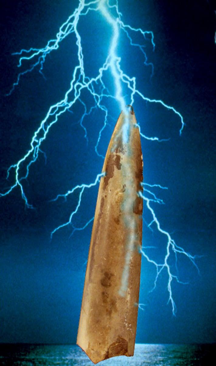 """Belemnitter – """"tordensteiner"""" – ble kanskje dannet under lynnedslag? I alle fall skulle de beskytte mot å bli truffet av lynet. Foto: Jan Stenløkk"""