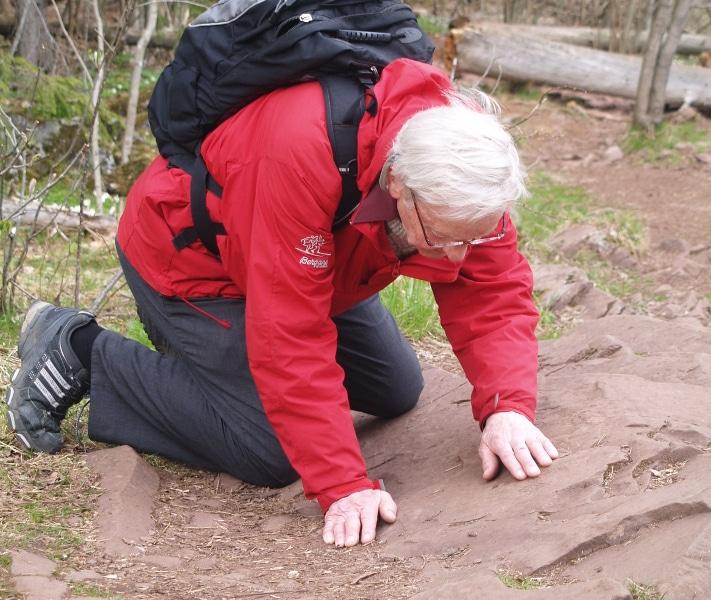 Inge Bryhni har en lang karriere bak seg som geolog, men også som formidler av geologisk kunnskap til allmennheten. Som førstekonservator ved Naturhistorisk museum var begge deler viktige oppgaver. Pensjonisttilværelsen har han bl.a. fylt som medredaktør av Landet blir til (Norsk Geologisk Forening, 2006) og som fast skribent for Store Norske Leksikon. Han har også skrevet sitt eget oppslagsverk på internett, GeoLeksi, hvor du kan finne forklaringer på geologiske ord og uttrykk. Foto: Halfdan Carstens