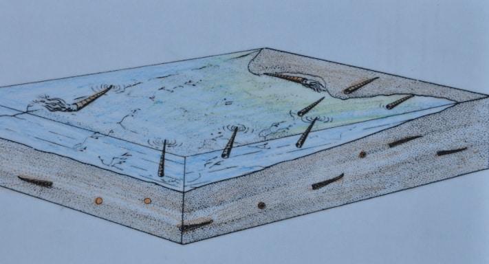 Slik tenker tegneren at det kan ha sett ut i det ordoviciske havet og sedimentene under. Legg merke til at vi ser både tverrsnitt og lengdesnitt av blekksprutene i og de øverste sedimentene.