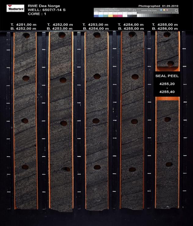 Kjernematerialet viser tydelig at Zidane har vært et oljefelt. Den mørke fargen på sandsteinene i reservoaret (til høyre), i motsetning til den lyse fargen under gass/vann-kontakten, skyldes død olje som ikke har lekket ut. At strukturen har vært fylt med olje er positivt fordi porøsiteten og permeabiliteten er større enn der reservoaret alltid har vært vannfylt og derfor kvartssementert. Illustrasjon: RWE Dea