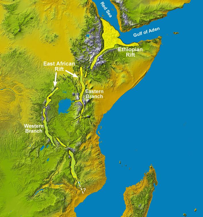 """Den østafrikanske riftdalen dannes fordi Afrika er i ferd med å dele seg i to. Afartrianglet er en såkalt """"triple junction"""" hvor tre plater (den afrikanske, den indiske og den arabiske) beveger seg fra hverandre langs tre spredningsrygger (Den østafrikanske riften, Rødehavet og Adenbukta). Resultatet er fortynnet skorpe og innsynkning. Afartrianglet er ett av to steder på Jorden der den midtoseaniske ryggen kommer på land. Kartografi: geology.com"""