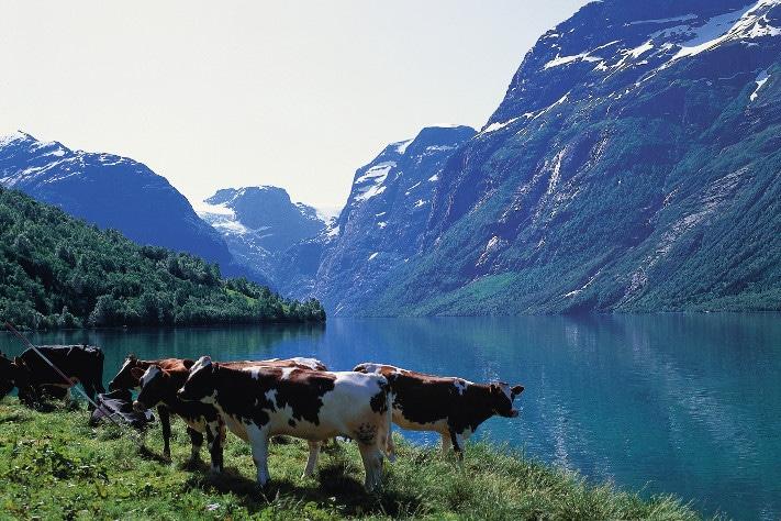 finne personer i norge sex utstyr