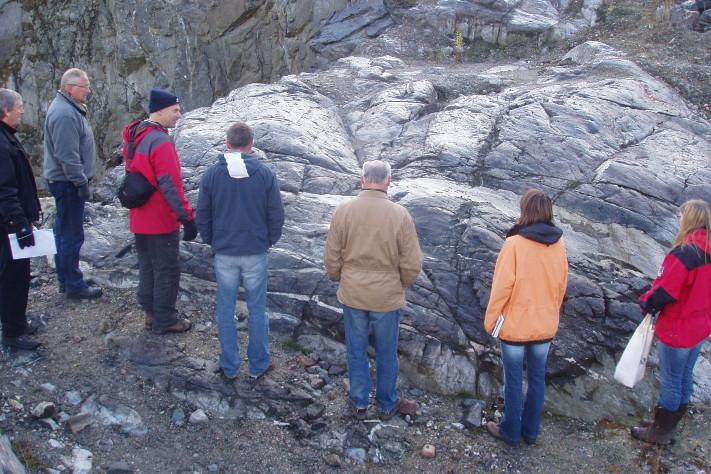 Thorium finnes i bergarten søvitt. En verneverdig forekomst er nylig funnet i et nedlagt steinbrudd. Foto: Nome kommune