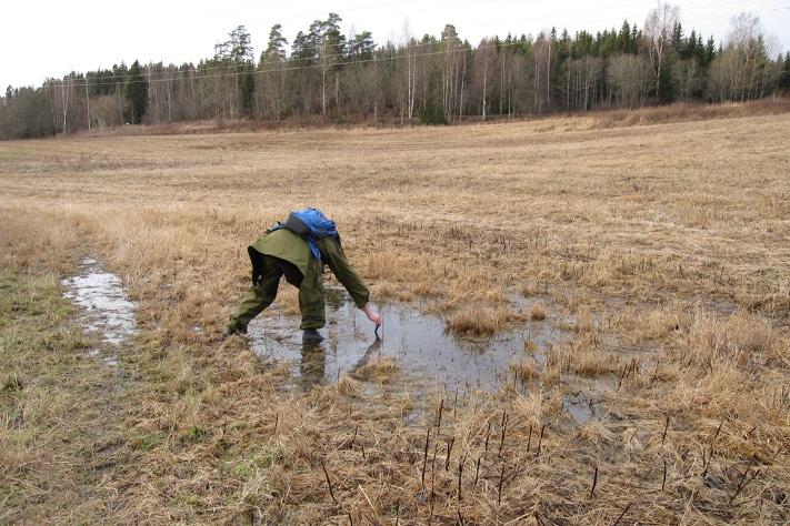 Feltarbeid for geofagelever er en av de store utfordringene som geofaglæreren har. Foto: Kari Beate Remmen