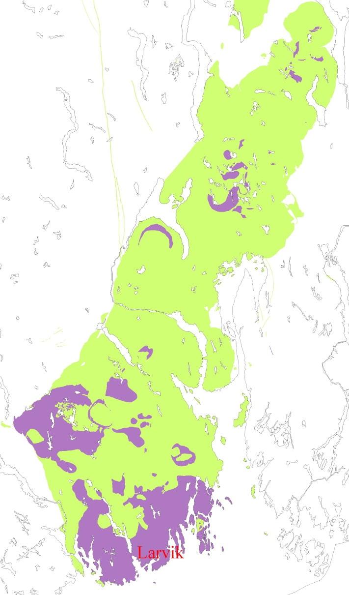 Oslofeltet med sedimentære bergarter fra kambrosilur og intrusivbergarter fra perm ligger i et belte fra Vestfold til Mjøstraktene. På dette kartet er forekomster med larvikitt avmerket, men det er bare rundt Larvik at bergarten har et fargespill som kan utnyttes kommersielt. Kartografi: Ole Lutro, NGU