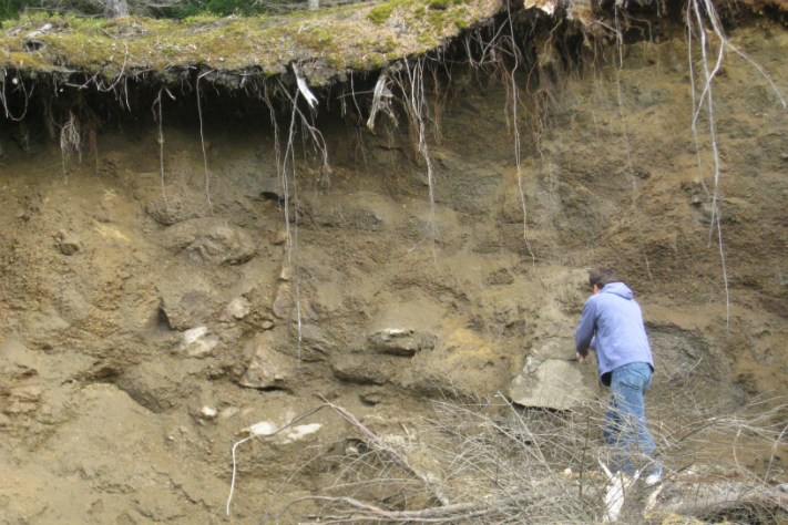 Saprolitt er en mer utbredt bergart enn hva geologene har vært klar over. Tidligere ble de tolket som enten løsmasser fra kvartær tid eller hydrotermalt omdannete krystallinske bergarter. Foto: Odleiv Olesen