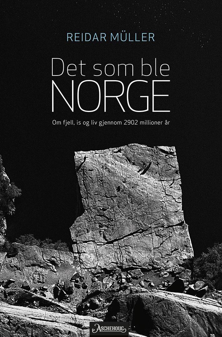 711x1080_Det-som-ble-Norge-forside