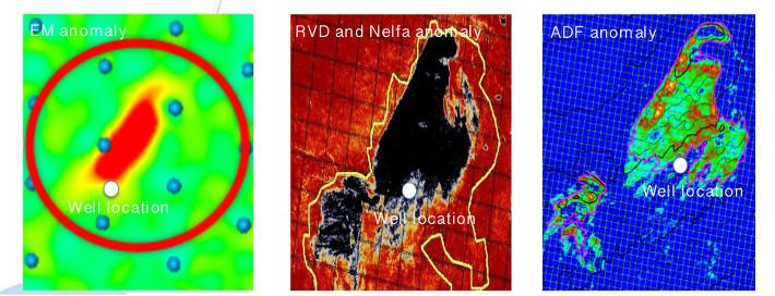 North Energy har ifølge eget utsagn brukt absolutt hele verktøykassen i evalueringen av Pingvin-prospektet. Her ser vi tre av metodene, og hvordan de samlet sett antyder at Pingvin er en struktur med hydrokarboner, og at brønnen ble boret i utkanten av en akkumulasjon. I realiteten var det altså 15 meter med gass i brønnen. EM-anomalien til venstre. © North Energy