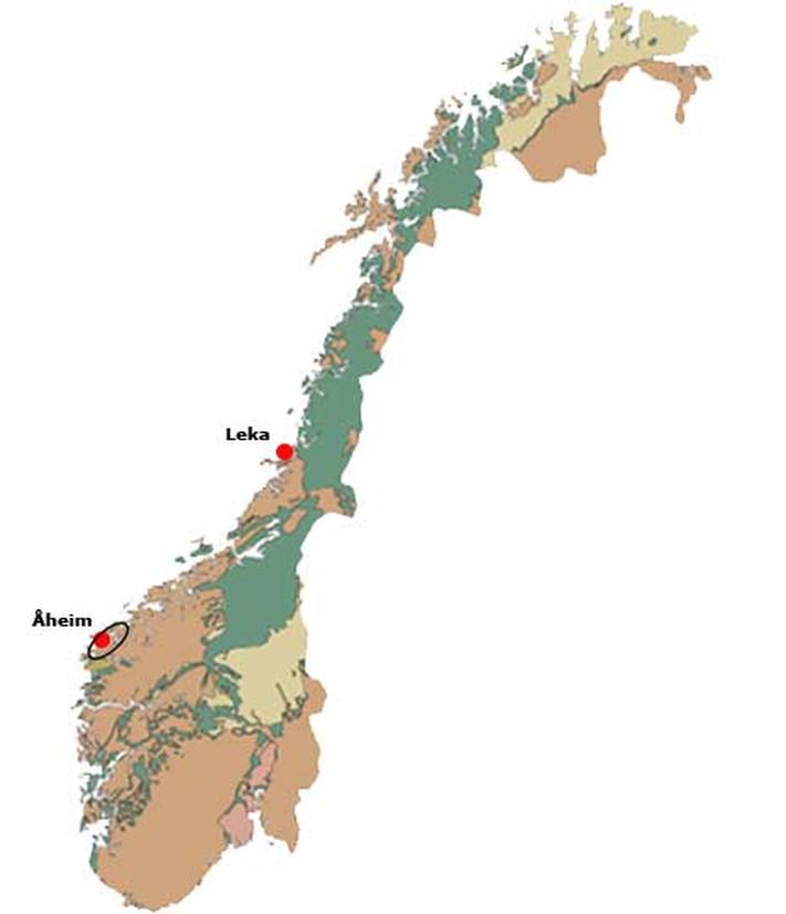 Olivinstein finnes mange steder i landet. De økonomisk viktigste forekomstene er fra Jordens urtid og ligger på Nordvestlandet, hvor forekomsten ved det lille tettstedet Åheim på Sunnmøre er verdens største produsent av denne bergarten. Mange store forekomster er knyttet til ofiolitter fra oldtiden i den kaledonske fjellkjeden, bl.a. Feragen sør for Røros, Raudfjellet i Snåsa, Leka, Helgelandskysten og Lyngshalvøya i Troms.