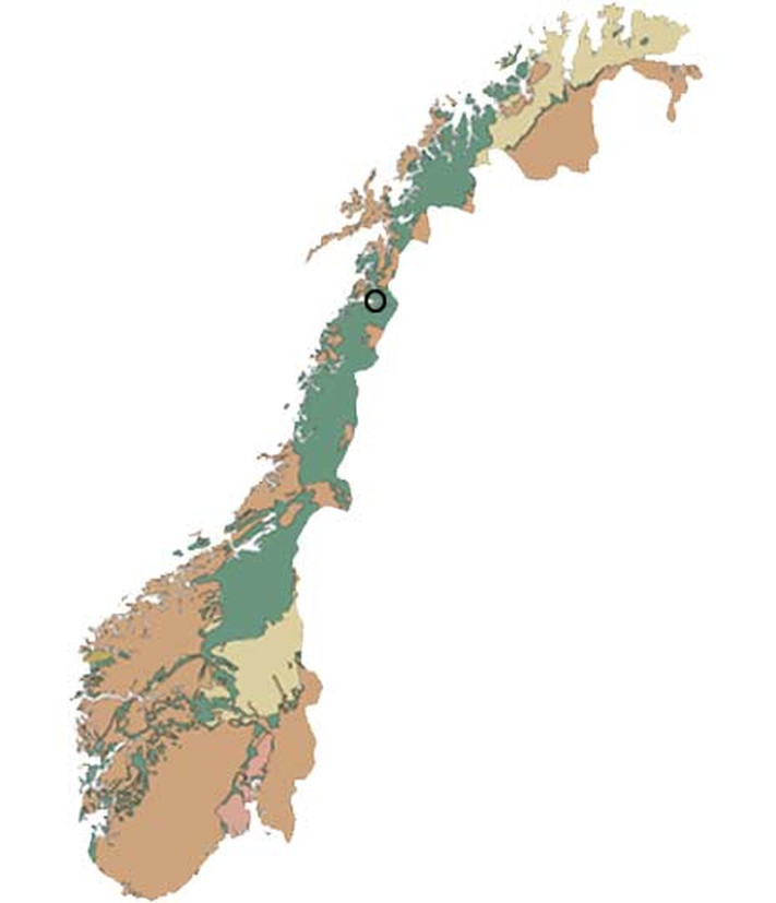 Både kalkstein og marmor (omdannet kalkstein) er en alminnelig bergart i den norske berggrunnen. Kalkstein er utbredt i Oslofeltet, mens marmor finns i grunnfjellet og de kaledonske bergartene som har vært utsatt for høyt trykk og temperatur i jordskorpen. Marmor er svært vanlig i Nordland fylke. Den egentlige fauskemarmoren finns bare i området rundt Fauske, men marmor av samme alder og utseende er funnet i området fra Ballangen i nord til Hattfjelldal i sør.