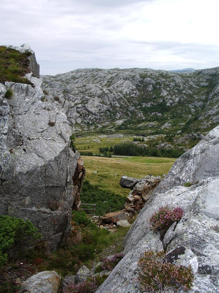Porten til Brurastakken med fylkesvegen i bakgrunnen. Foto: Aud Elsa Grøneng